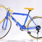 Bicicleta radler