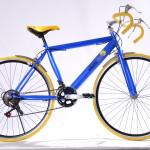 Bicicleta radler2